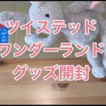 【開封動画】ディズニー ツイステッドワンダーランド グッズ開封 フーディー