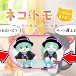 【ツイステ】フロイドネコとジェイドネコ爆誕計画【ネコトモ】