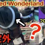 【Twisted Wonderland】お店が想定していない取り方で取ろうとしたら、、、【ツイステ】【フロイド・リーチ】寝そべりぬいぐるみ【クレーンゲーム UFOキャッチャー】 攻略 コツ 橋渡し