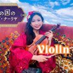 熱砂の国のアリアーブ・ナーリヤ BGM ヴァイオリンだけで弾いてみた