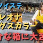 【クレーンゲーム】レオナ・キングスカラー取ってきた【UFOキャッチャー】
